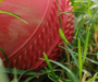 Latest Cricket Results and Interesting Matches To Watch